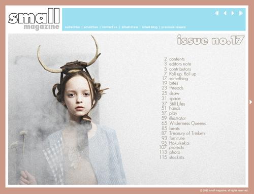 issue 17 small magazine