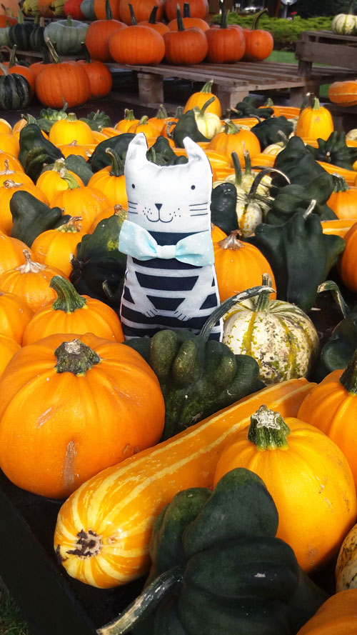 kitten-soft-toy-with-pumpkins-by-pinknounou